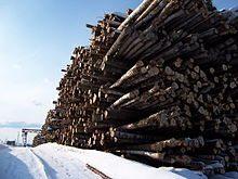 Склад древесины, подлежащей обработке (фото)
