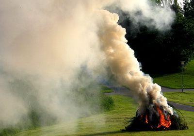 Дым, выделяемый при горении листвы опасен для человека.