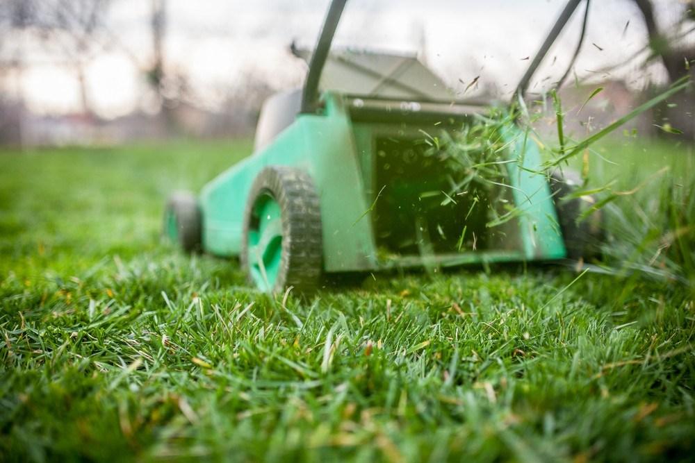 Применение подсолнечного масла для газонокосилки значительно упростит уход за инструментом
