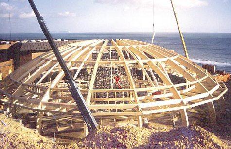 Из дерева можно построить здание любой формы и размера